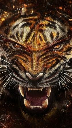 tiger glass shards aggression teeth