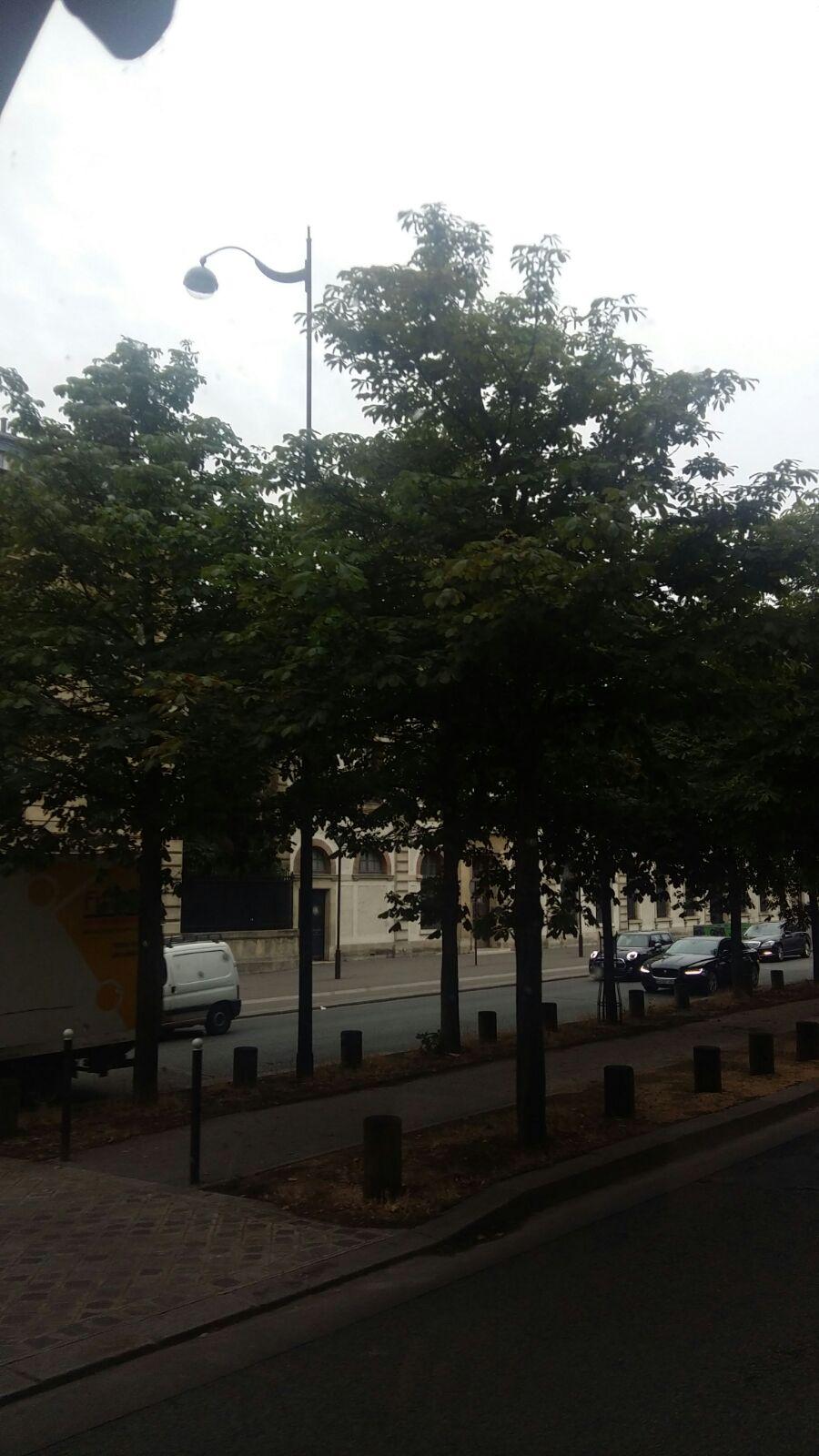Paris street - ryuklemobi