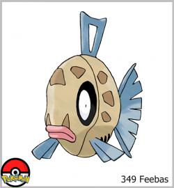 349 Feebas