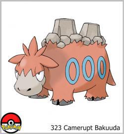 323 Camerupt Bakuuda