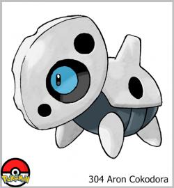 304 Aron Cokodora