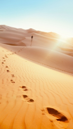 Desert footprint
