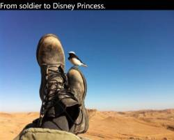 From soldier to Disney Princess
