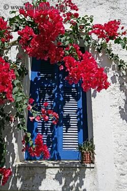 çiçekli kapılar (4)